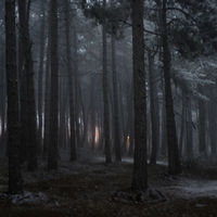 dzien_8_1