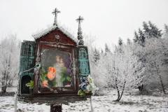 Szczawa, fot. Adam Gryczyński
