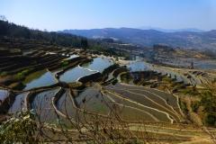 Tarasy ryżowe w Qingkou (Yunnan 2014) podpisane