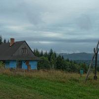 walaszczyk_2